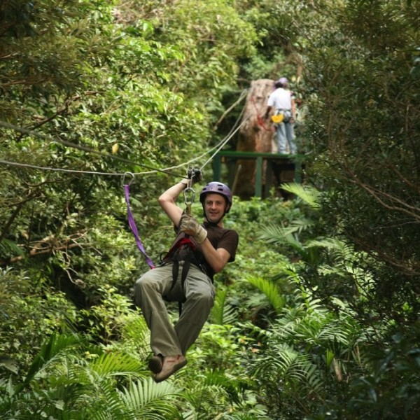 Buena Vista Canopy tour