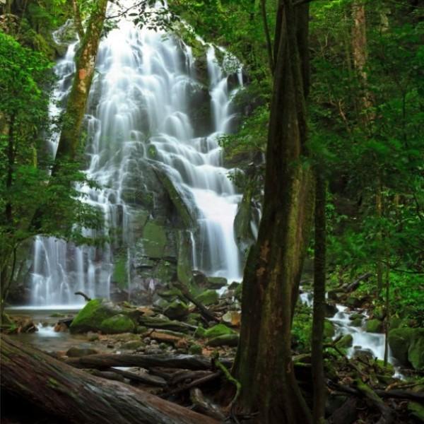 waterfall rincon de la vieja national park