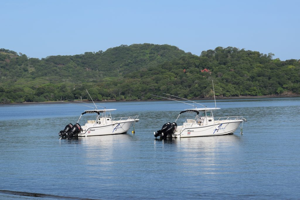Sport fishing costa rica costa rica best trips for Costa rica fishing packages