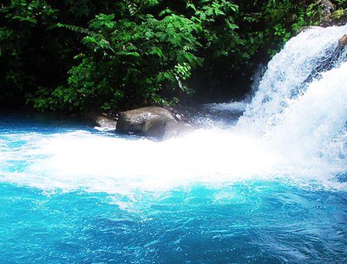 sensoria-the-best-nature-tour-in-guancaste-aerea-costa-rica-amazing-hot-springs-with-jacamar-tours