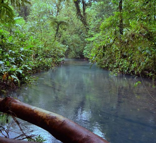 Rio Celeste Hiking Tour